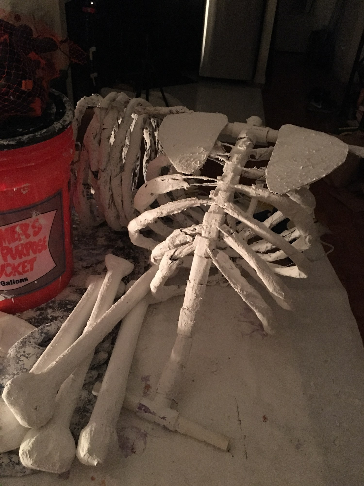 The first skeleton's ribcage, now roughly complete