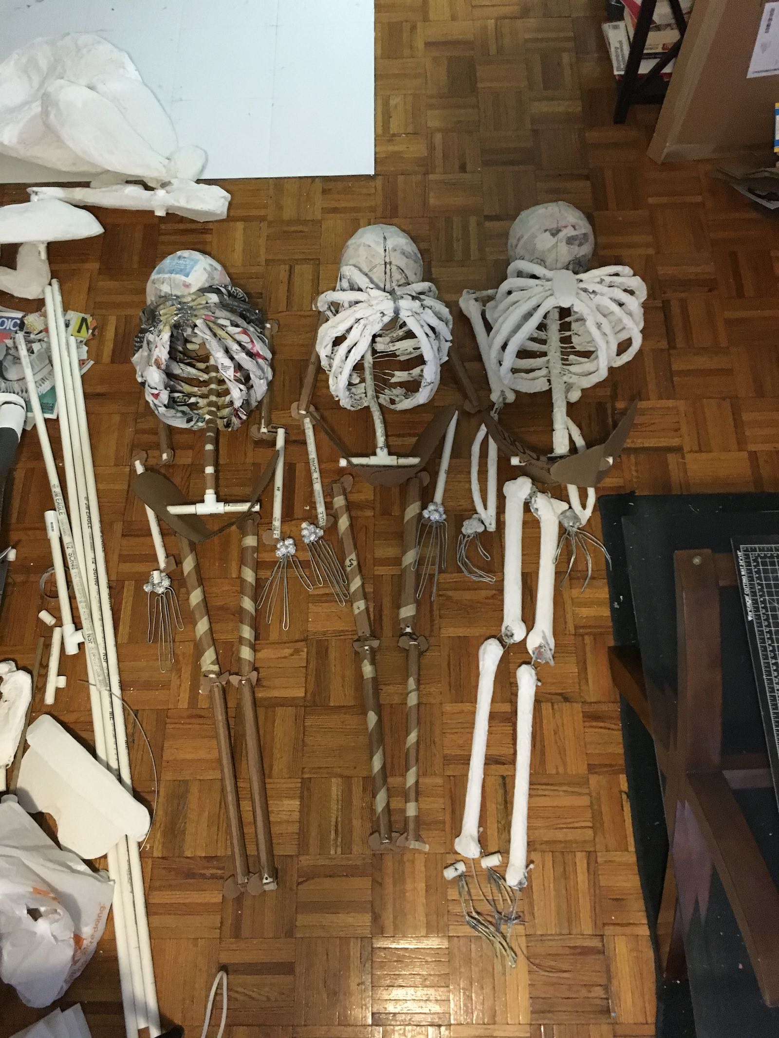 Three mostly-complete skeletons, laid out on the floor